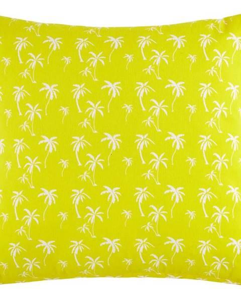 Möbelix Dekoračný Vankúš Lady Palms, 45/45cm, Žltá