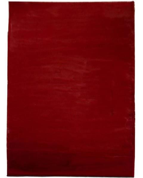 MERKURY MARKET Koberec Shaggy Dorri Fur 1