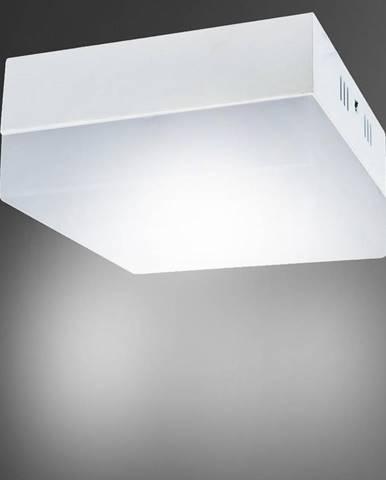Stropné svietidló Robin LED D 18W 4000K 03091