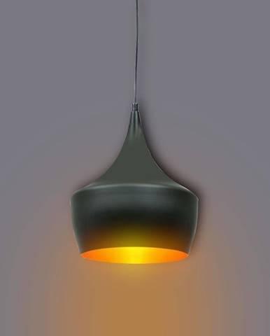 Lampa Modern 1B 305459 LW1 čierna