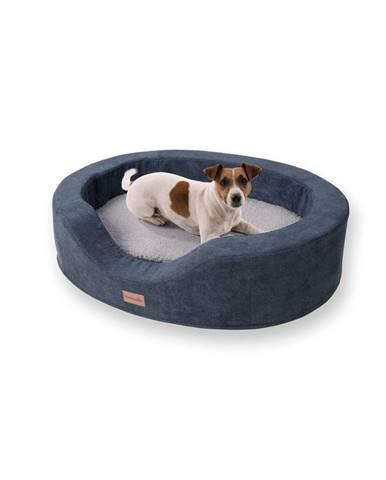 Brunolie Lotte, pelech pre psy, vankúš pre psy, prateľný, ortopedický, protišmykový, priedušná pamäťová pena, veľkosť M (80 x 20 x 60 cm)