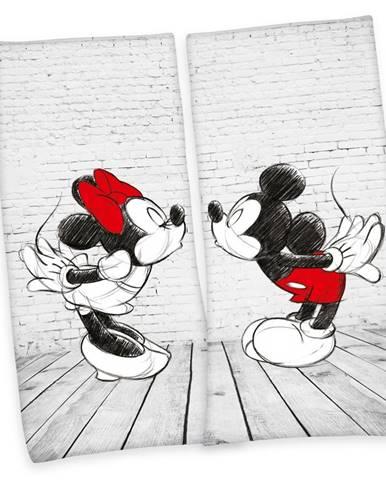 Herding Osuška Mickey & Minnie