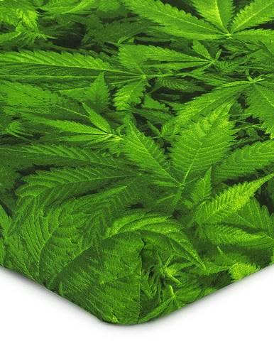 4Home Prestieradlo Aromatica, 90 x 200 cm, 90 x 200 cm
