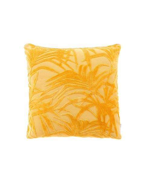 Zuiver Žltý vankúš s výplňou Zuiver Miami, 45×45cm