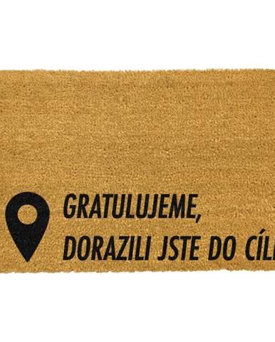 Rohožka z prírodného kokosového vlákna Artsy Doormats Cíl, 40 x 60 cm