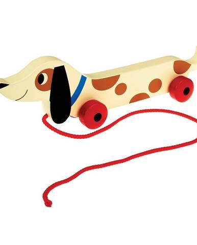 Drevený ťahací jazvečík Rex London Charlie The Sausage Dog, dĺžka31,5cm